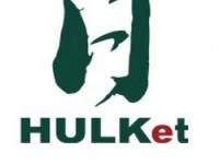 Hulk Energy Technology debuts powerful CIGS solar module in U.S.