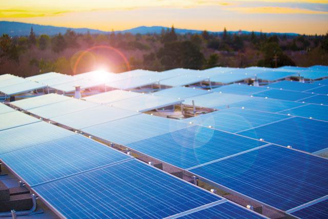 Trina solar cell