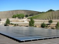 Check out the rooftop solar PV of Niner Wine Estates