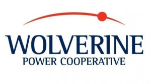 Wolverine Power solar project