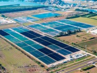 106-acre Big Bend Solar project completed in Tampa