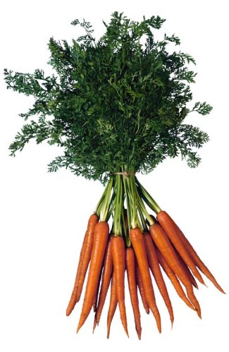 Largest Carrot Grower Turns to Conergy for 3.4-MW System