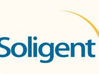 Soligent partners with Chilicon Power for grid-support inverter, monitoring solutions