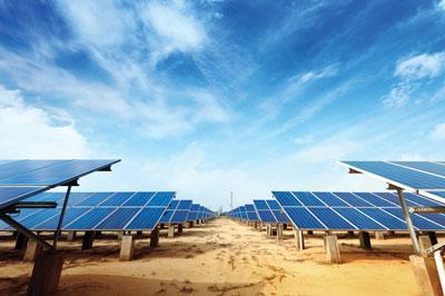 solar-panel-field-(cut-1)