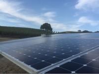 Niner Wine Estates achieves net-zero energy via REC Solar