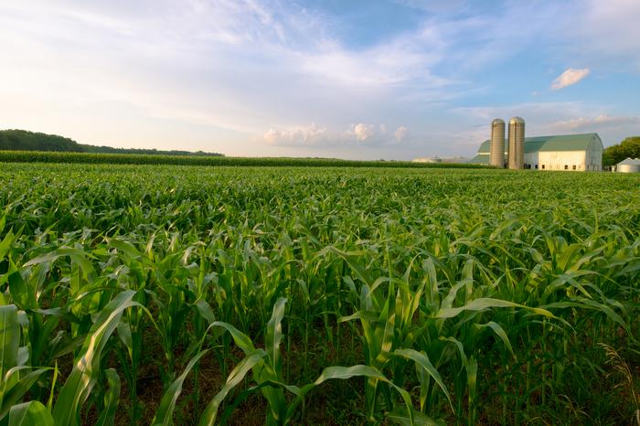 Farmland solar lease