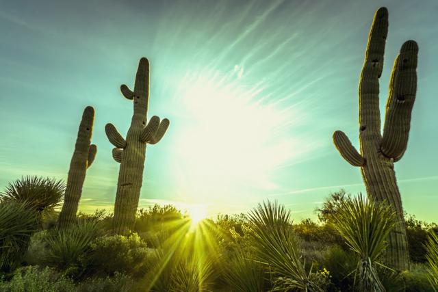 arizona solar policy
