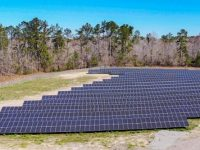 One of the 12 new utility-scale LG solar farms in North Carolina, developed by LG Electronics with Cypress Creek Renewables. (PRNewsfoto/LG Electronics USA)