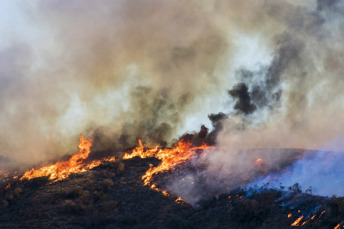 Wildfire Burns Hill with Flames and Dramatic Smoke Formations du