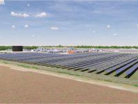 Rendering of the solar farm at St. Elmo, IL Conagra facility