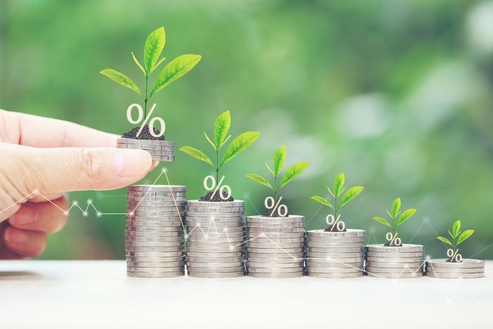 Interest rate up and Banking concept, Plant growing on stack of