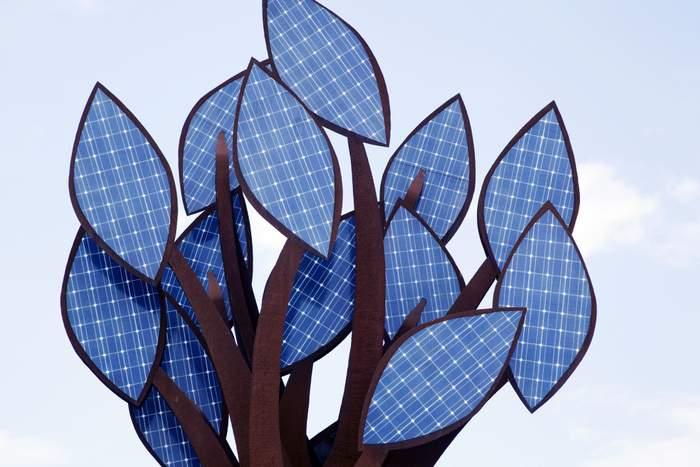 solar prices on trees