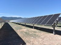 New Mexico's Kit Carson Electric Cooperative brings 3-MW solar plant online