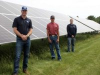 World's largest horseradish grower adds solar PV system in Northern Wisconsin