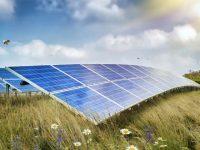 Renewable Properties breaks ground on Napa's Soscol Ferry Solar Project