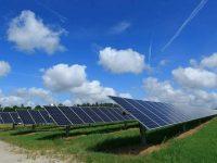 Pine Gate Renewables partners with Duke Univeristy on 101-MW of solar capacity