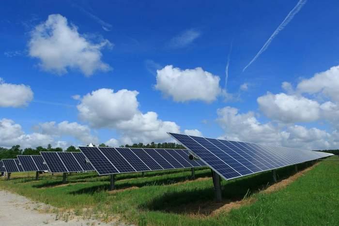 Peony - Springfield, SC Pine Gate Renewable