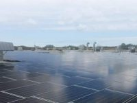 Distributed Solar Development acquires Massachusetts community solar portfolio