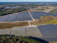 BayWa r.e. Fern Solar project, Edgecombe County, N.C.