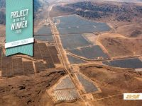 Utility-Scale Solar Project of the Year 2020: Turquoise Solar