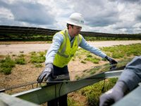 Duke Energy adds 50-MW Cleveland County, N.C. solar project