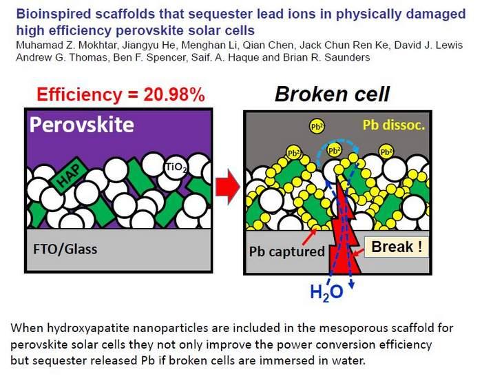 perovskite cell