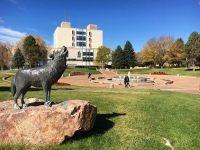 Colorado State University to double solar production with Namasté Solar project