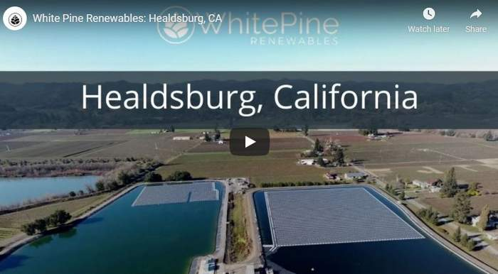 white pine renewable floating solar