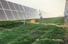 Stormwater troopers: Vegetation is crucial for erosion control on solar projects